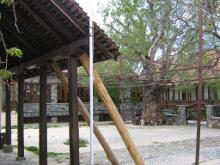 Двор женского монастыря Панагии Трикуккя.